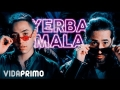 Andy Rivera - Yerba Mala (ft. Dalmata)