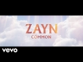 Zayn Malik - Common
