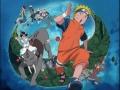 Tsubomi de Naruto