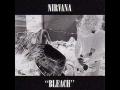 Nirvana - Mr. Moustache