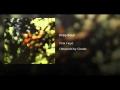 Pink Floyd - Free Four