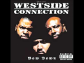 Do You Like Criminals? de Westside Connection