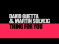 David Guetta - Thing For You (ft. Martin Solveig)