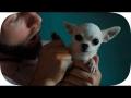 Lytos - Amor a la carta (ft. Brock Ansiolitiko)
