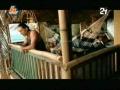 Vídeo Canta Corazón