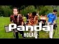 Panda - HoLa